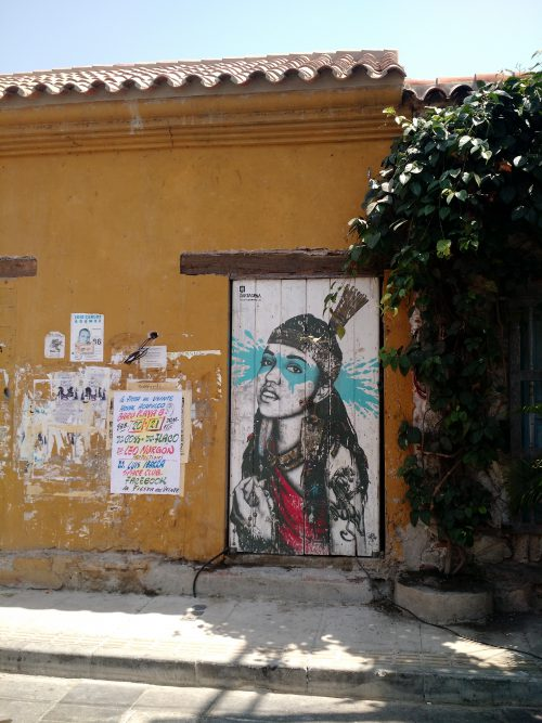 India Catalina by Findac